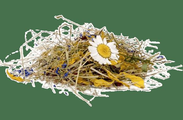 Organoid-Produkt bunte Almwiese